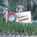 クリスマスイブの『Butchart Gardens』(ブッチャートガーデン)に行ってきた!(お昼編)