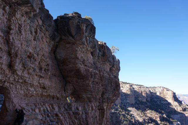 grand-canyon18