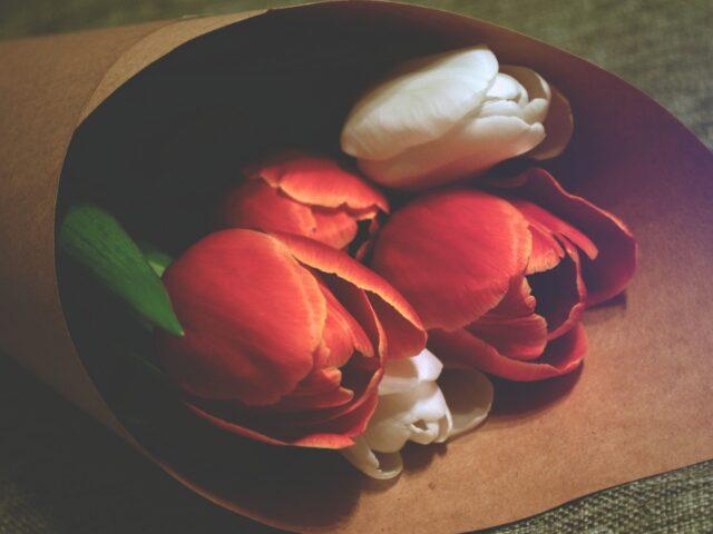 blog-renewal1
