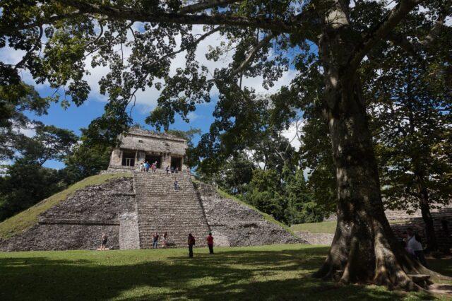 palenque31