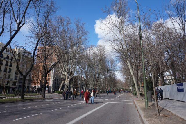 madrid-street